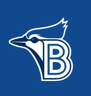 BluefieldBlueJayscap